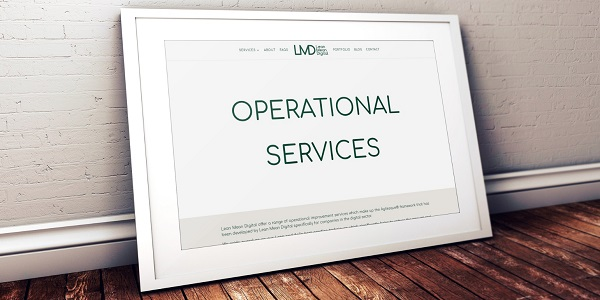 Operational improvement services